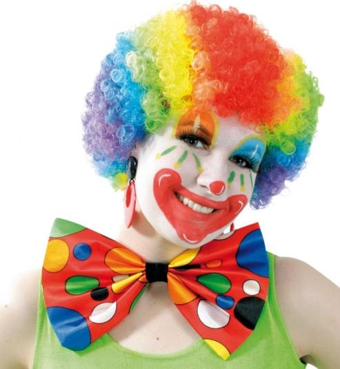 Fasching Clown Perücke kunterbunt