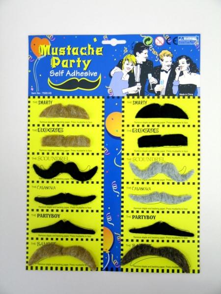 Bartkarte mit 12 Schnurrbärtchen, sortiert