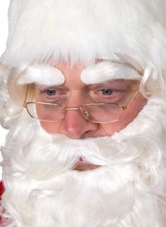 Nikolausbrille Metallbrille mit Gläsern