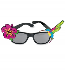 Brille Hawaii