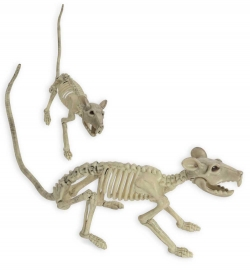 Skelett Ratte Halloween Deko