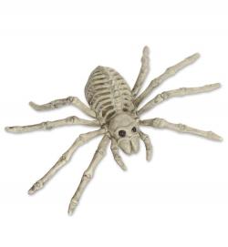 Skelett Spinne Halloween Deko