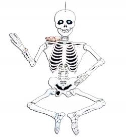 Deko-Skelett aus Pappe, beweglich, ca. 140 cm Höhe