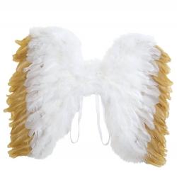 Engelsflügel mit Goldrand 35 cm Höhe
