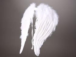 Engelsflügel mit echten Federn 50x45 cm