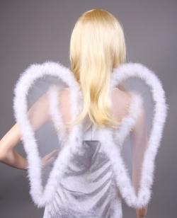 Transparente Engelsflügel 60 cm x 53 cm