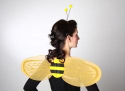 Bienenflügel im Set