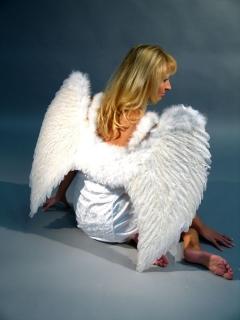 Engelsflügel aus echten Federn 65x80 cm
